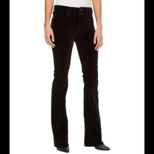 Ann Taylor Loft velvet bootcut pants